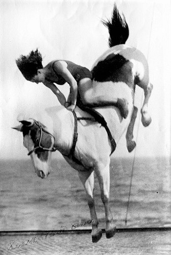 Black and white photo of Sonora Webster Carver diving on her horse